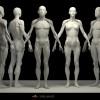 男性女性结构概括对比2